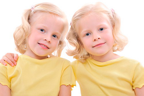 http://www.factruz.ru/genetic_mistery/images/identical-twins.jpg